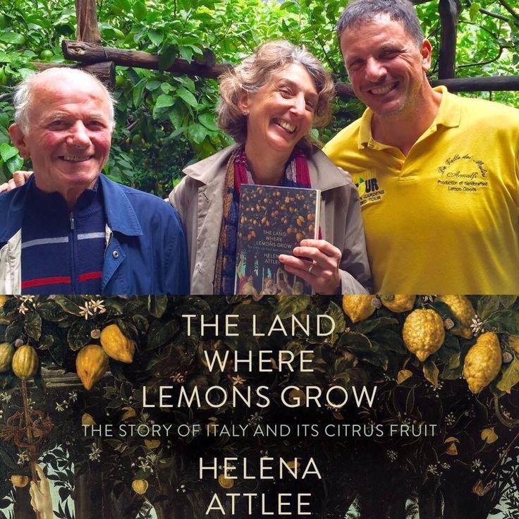 The #Land where #Lemons #Grow ..... my #family #history in the #book of Helena Attlee  #familyfirst #traditions #generations #Lemon #LemonMind #ORGANIC #FARM #educational #tour #lemontour #AMALFI #Amalficoast #Amalfilemon