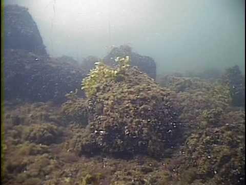 Itämeri pinnan alla. Ei ääntä. (n. 8 min.)