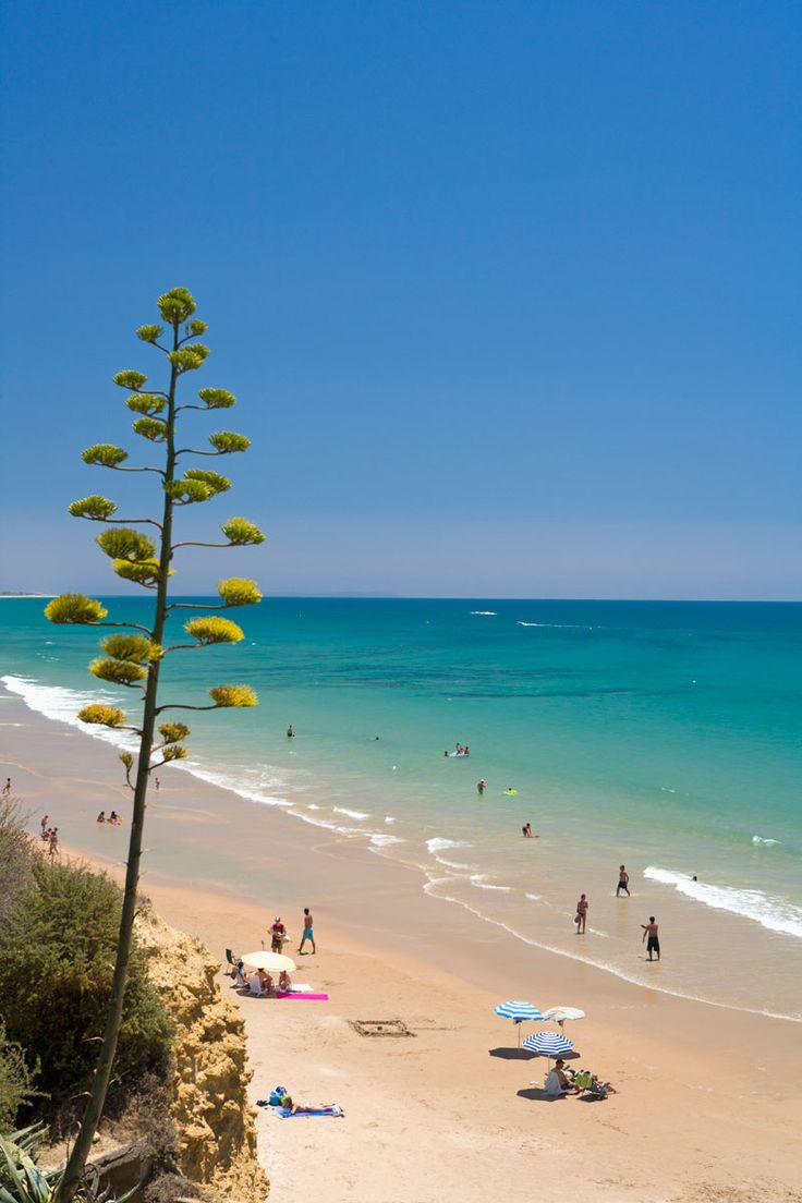 La Fontanilla: la mejor playa de Conil de la Frontera