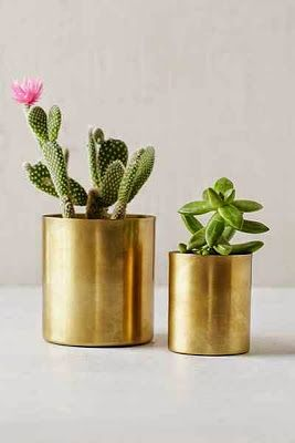 #anthrofave // Great idea for when you can't seem to keep a plant alive for more than a week!