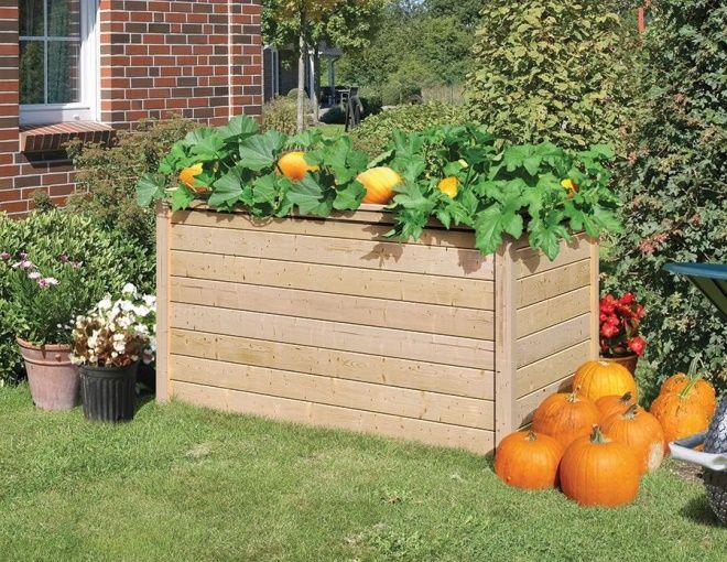 39 besten Herbstgemüse Bilder auf Pinterest Pflanzen, Herbst und - schone garten fur sparsame
