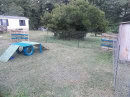 Image result for dog play yard ideas