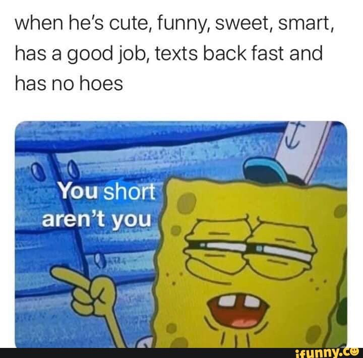 When He S Cute Funny Sweet Smart Has A Good Job Texts Back Fast And Has No Hoes You Short Aren T You Ifunny Funny Quotes Stupid Memes Funny Text Memes