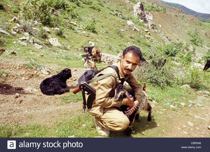 PKK Kurdistan Workers Party guerrillas in Zele, Iran-Iraq border area, Iraqi Kurdistan from where they staged operations.