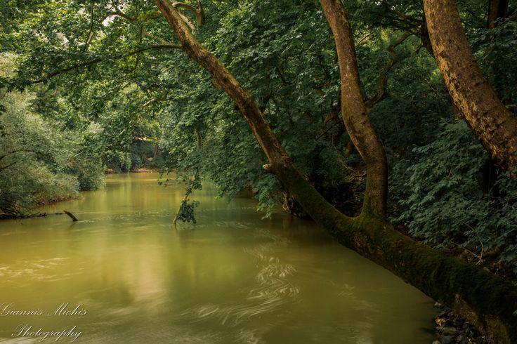 Πηνειός: Το ποτάμι που έγινε τραγούδι, μας αποκαλύπτεται! - Προπαγάνδα