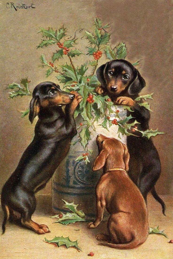 построения собачки на ретро открытках книгу вошли