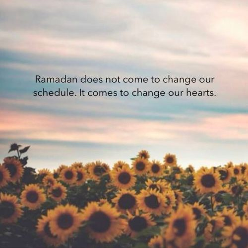 7 Tips for a Rich Spiritual Experience in Ramadan -