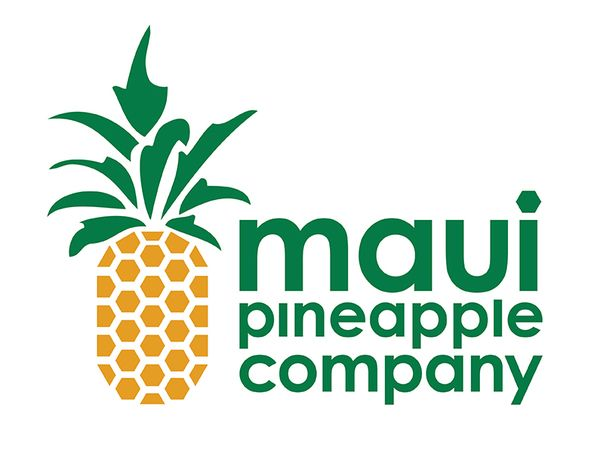 11 Best Pineapple Logos Images On Pinterest Pine Apple