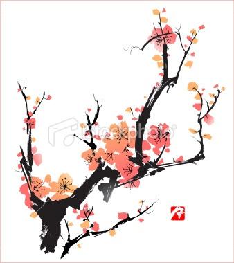 Peach Blossom Illustration | Illustrations i like ...