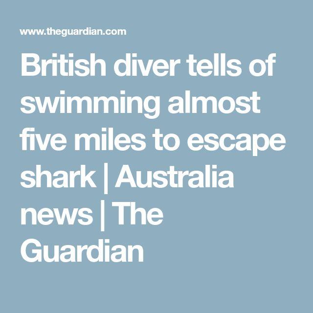 British diver tells of swimming almost five miles to escape shark | Australia news | The Guardian