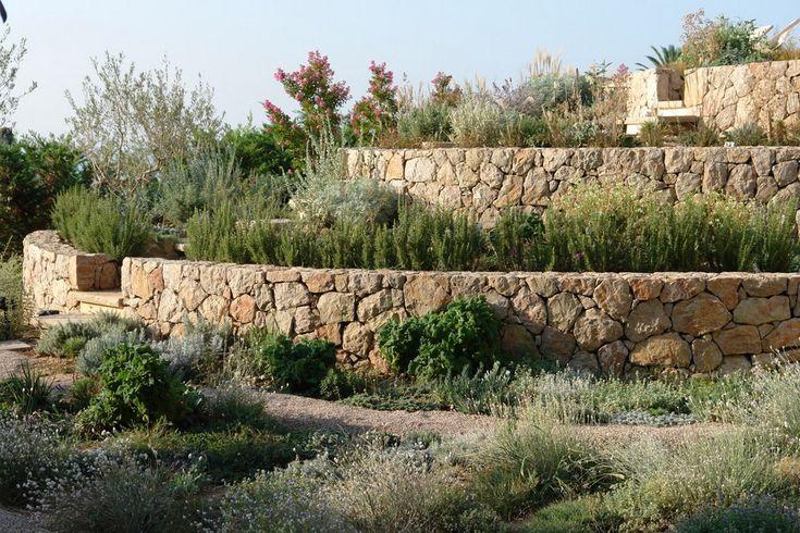 34 best for hilary images on pinterest garden dry for Dry scape landscaping