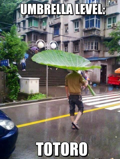 umbrella totoro feuille leaf level my neighbour mon voisin anime streaming online legal gratuit