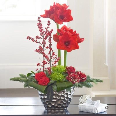 This designer arrangement is a modern take on Christmas and a dramatic centrepiece. Red berries, glittering roses and spruce reflect the festive mood and the elegant amaryllis take centre stage to create a truly stunning display that is sure to attract plenty of admiring glances.Featuring 2 red Nelson carnations, 2 green Anastasia chrysanthemums, 2 red ilex, 3 red large-headed Grand Prix roses with gold glitter.