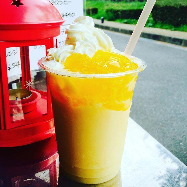 【harumiu1】さんのInstagramをピンしています。 《いつも、ご覧いただきましてありがとうございます😊  海カフェChapo & Miu の営業日時のお知らせです。  本日8月4日(木)は、お休みさせていただきます。 5日(金)午後3時から6時まで 6日(土)午後3時から6時まで  7日(日)午後3時から6時まで 📷は、スッキリ味!オレンジとカスピ海ヨーグルト(ゼリーのせ)🍊 皆様のお越しを 心よりお待ちしております💗  #バーベキュー #スムージーフラッペ  #海カフェ #限定  #二色浜 #海水浴  #二色の浜  #カフェ #海カフェ #海 #貝塚  #ビーチ #二色の浜公園  #スムージー #ナイト#限定 #オレンジ #リーディング #アンチエイジング #ボディリンパマッサージ #フェイシャルエステ #ハッピーの輪 #BeautySpaceMiu #エステ #泉佐野市 #感謝 #ダイエット #脱毛 #エステ #おかげ様》