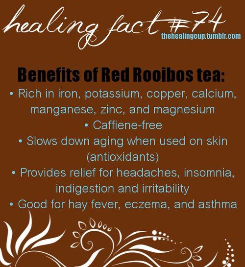 thehealingcup: rooibos tea