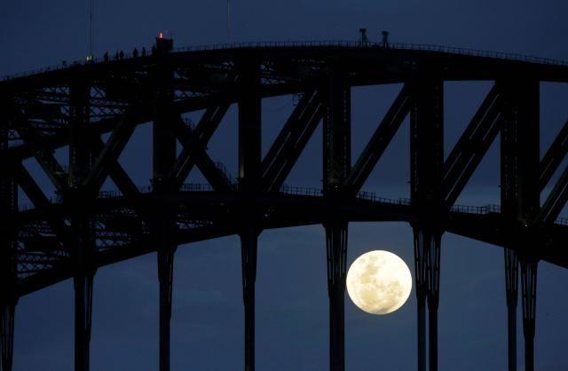 Sur le pont du port de Sydney.