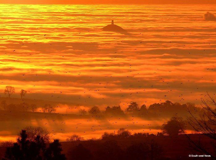 A flock of birds taking flight at sunset near Glastonbury Tor has created a spectacular scene.