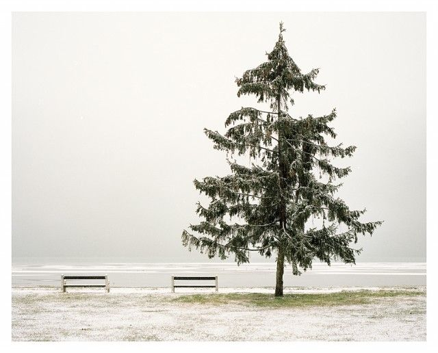 Stay by Akos Major-16