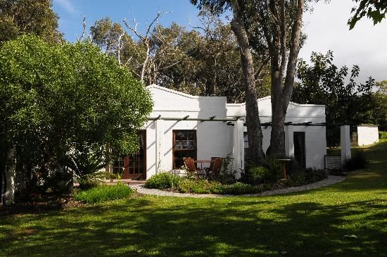 Bring a blanket and lay it down under a shady tree for a quiet afternoon of reading or bird watching. #sittingunderatree #relaxingonthegrass #capetownaccommodation #selfcatering #capetown #southafrica