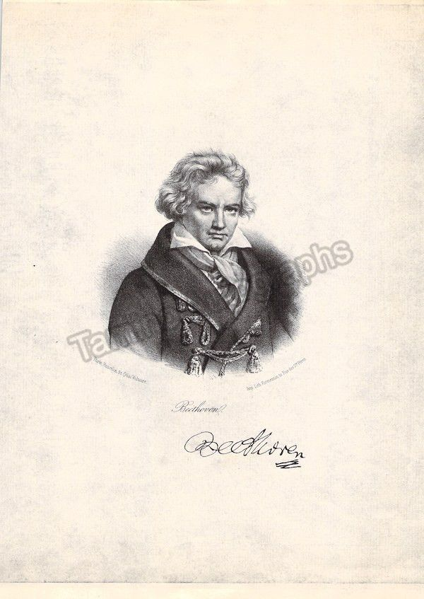 Beethoven essays research papers
