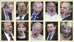 Filosofie şi literatură: Pensii porcine pentru parlamentarii-porci