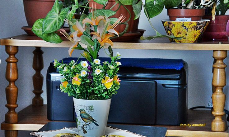 Liliomfa tavaszi virágokkal