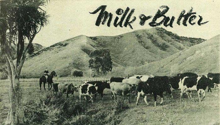 Milk and Butter in Gisborne - 1955