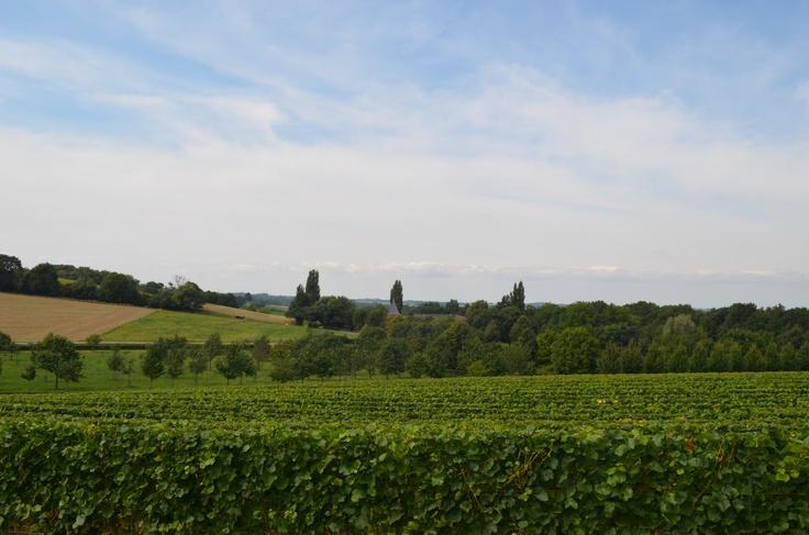 Hoe mooi kan Nederland zijn op een zonnige dag in September bovenop de Kunderberg in Voerendaal