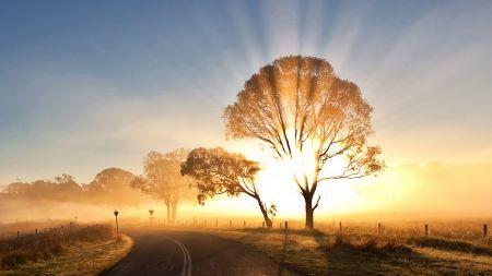 Nascer do Sol... sem dúvida, um grande ou o maior espetáculo da Terra, proporcionado diariamente, e gratuitamente.