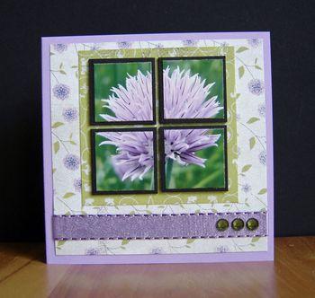 Using your photos on cards: Card Idea S, Homemade Card, Card Art, Card Member, Card Ideas, Card Making, 745 2 Card