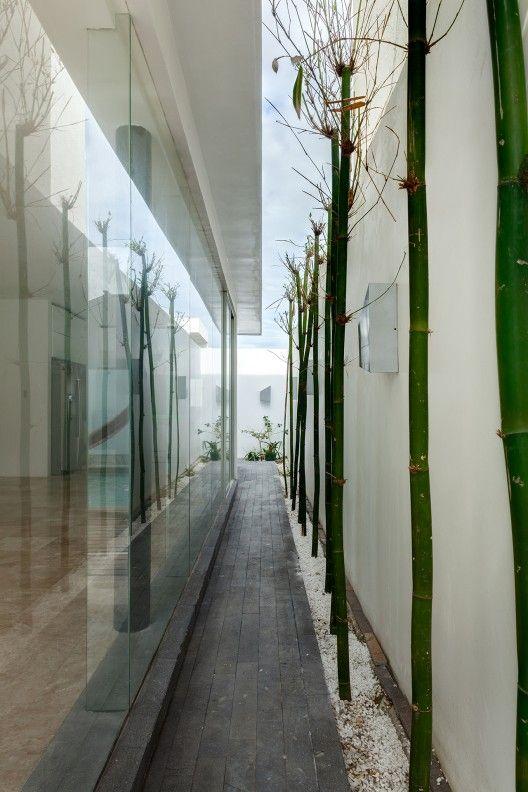 Casa Aedes | taller adc