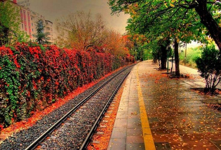 Autumn in Ankara, Turkey.