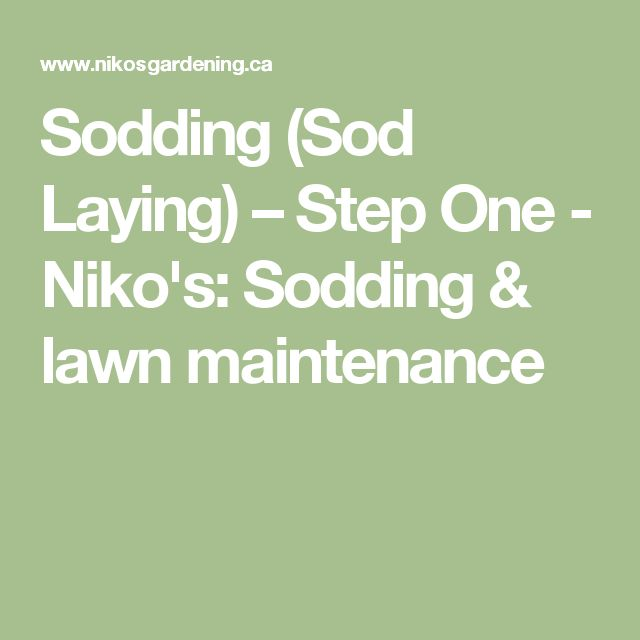 Sodding (Sod Laying) – Step One - Niko's: Sodding & lawn maintenance