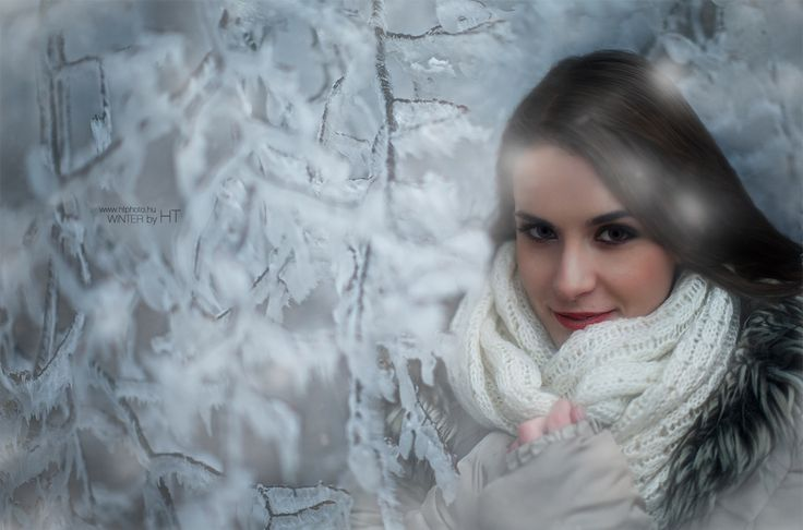 Winter by HorvathTamas on 500px