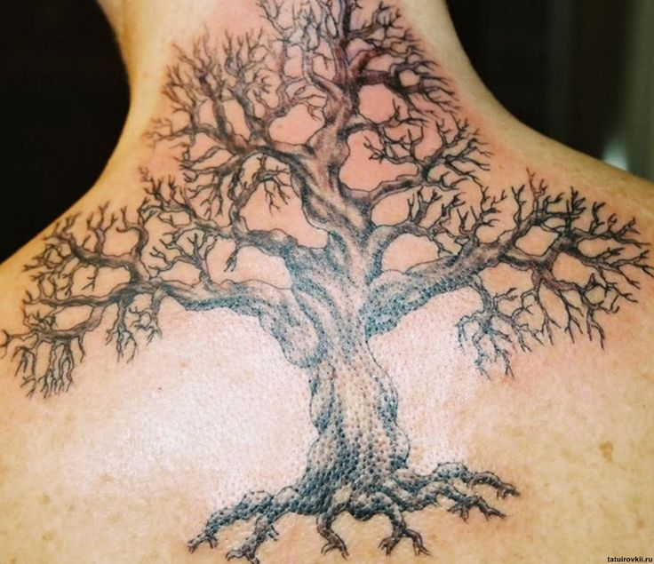 Skeleton Family Tree Tattoo images