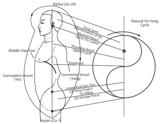 Taiji Ball Qigong - Conditioning Theory of Two Polarities in a Human Body repinned by http://www.medischeqigong.com/ #qigong