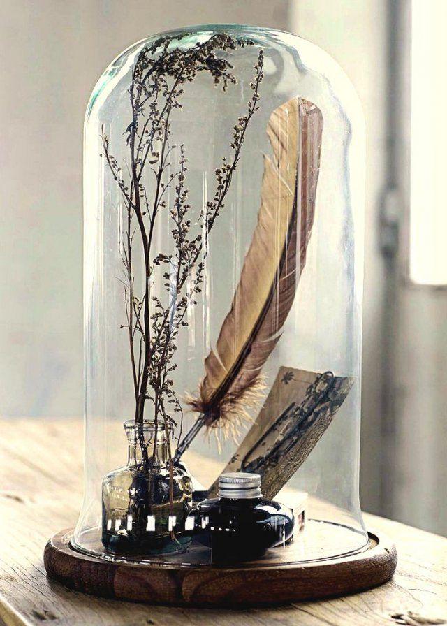 Les 25 meilleures id es de la cat gorie cloche en verre sur pinterest cloch - Cabinet de curiosite forum ...