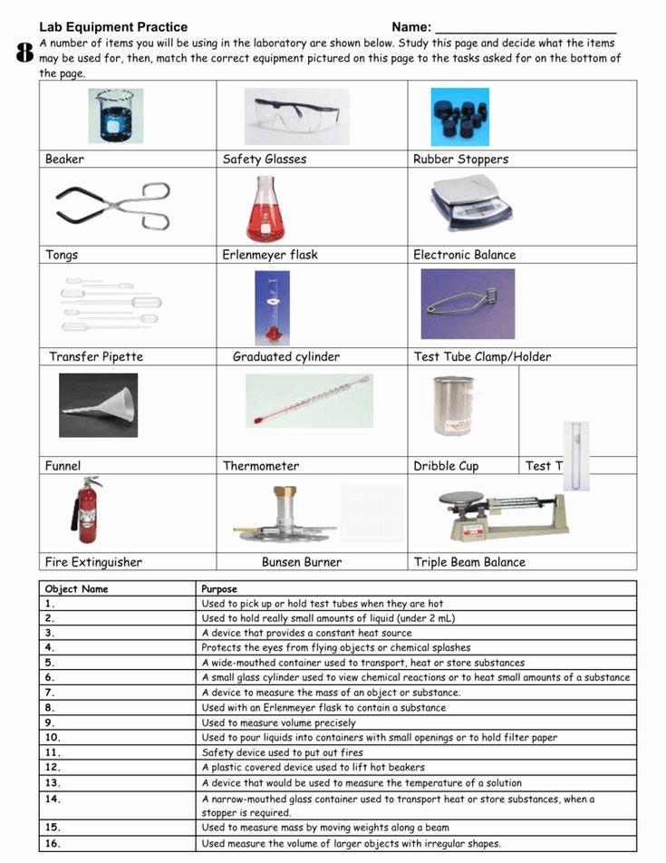 Lab Equipment Worksheet Answer Key New Lab Equipment ...