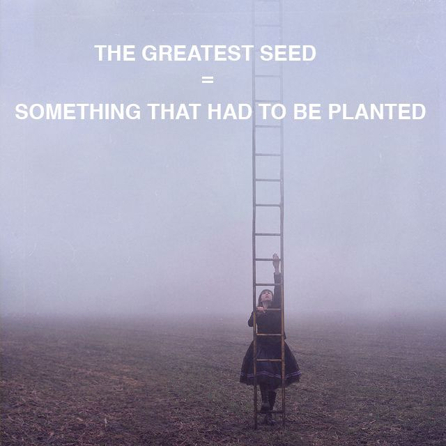 The Greatest Seed = Something that had to be Planted