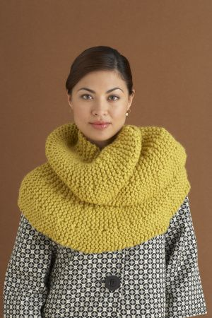 Free Knitting Pattern: Short Row Scarf -  good for a second or third project.