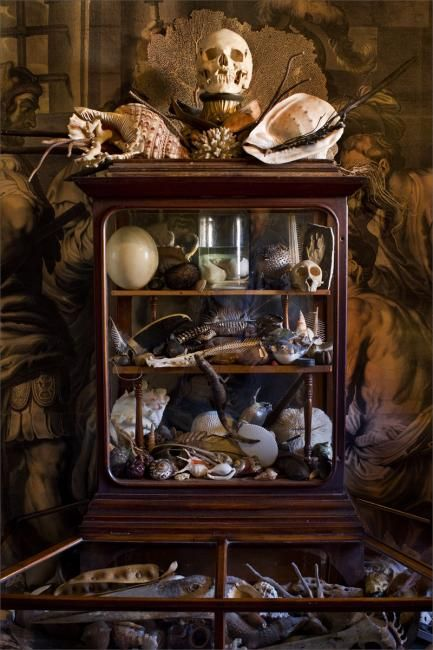 Malplaquet House, Stepney, East London. Restored 18th century home filled with a massive private art and natural history collection. More photos here: http://theartoftheroom.com/2013/03/cabinet-of-wonder/