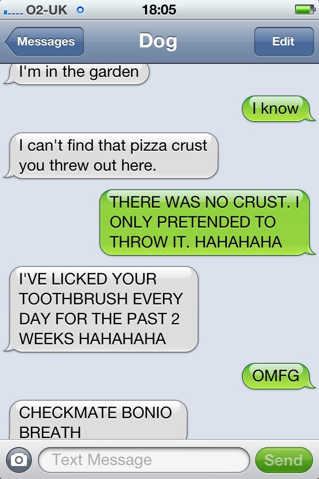 """Ive never laughed harder than I do at """"dog"""" text messages"""
