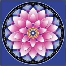 pink lotusTattoo Ideas, Third Eye, Lotus Tattoo, Colors Book, Tattoo Inspiration, Pink Lotus, Beautiful Mandalas, Lotus Flower, Lotus Mandalas
