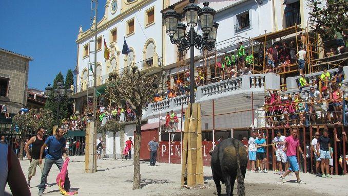 Mañana reunión de las Peñas, Ferias y Fiestas del Tabaco y del Pimiento 2017 a las 19:00 horas en el salón de plenos del Ayuntamiento de Jaraíz.