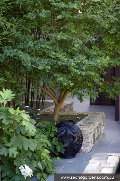 52 best les haies de jardin images on pinterest garden for Courtyard stone and landscape