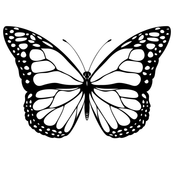 Butterfly Coloring Sheets Printables | Free Printable Butterfly Coloring Pages For Kids