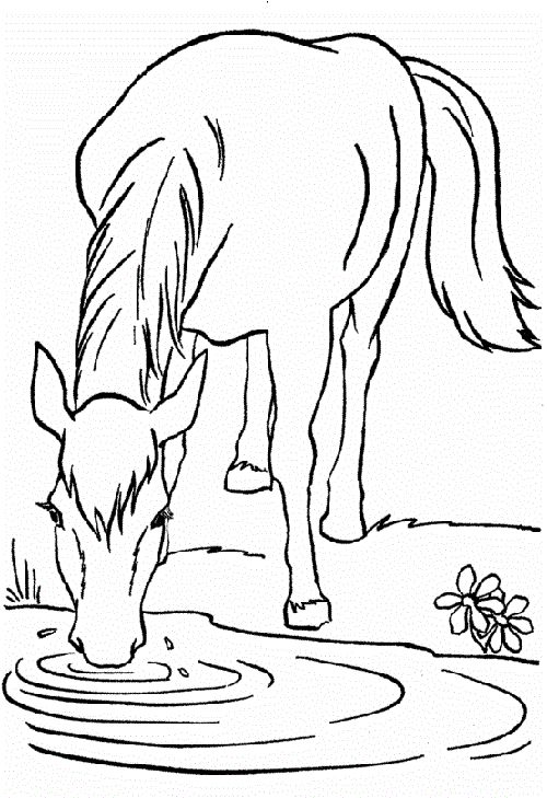 25 best horse coloring pages your toddlers will love to color - Horse Coloring Pages Toddlers
