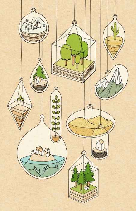 Rose Wong - Illustration / Terrariums • ink and digital