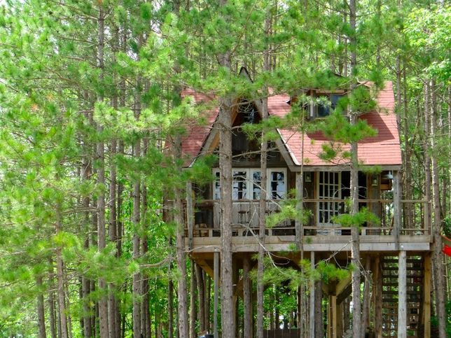 Tree House in woods made from Reclaimed wood from a barn: Cabin, Lynn Knowlton S, Tiny House, Tree Forts, Dream, Tree Houses, Trees, Lynne Knowlton S, Treehouses