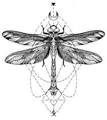 Image result for realistic dragonfly tattoo